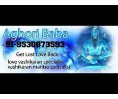intercast love marriage specialist baba ji +91-9530873593